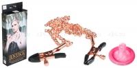 Зажимы для сосков с цепями Entice Accessories