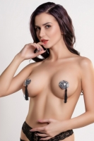 Пестис серебряные сердечки из пайеток с черными кистями Erolanta